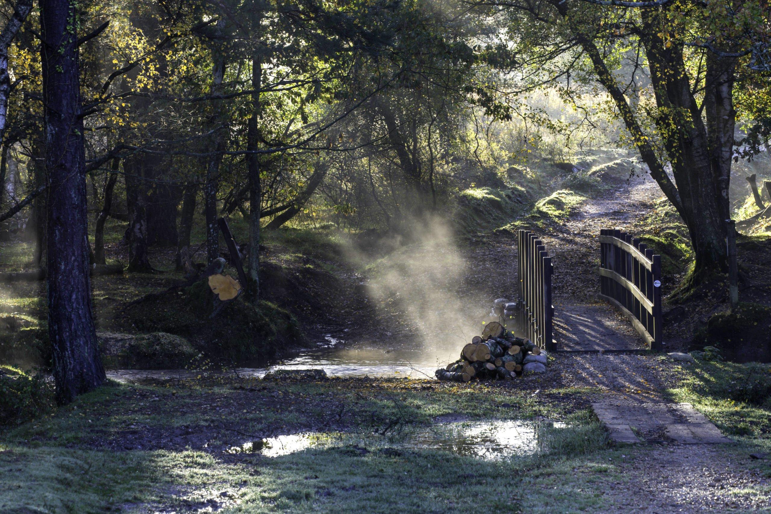 A misty bridge, Mike Boss